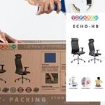 Executive  Director Chair Echo HB