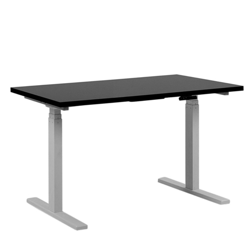 SIT-STAND TABLE