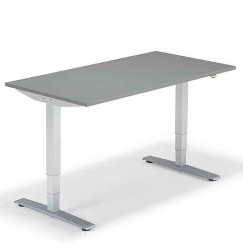 GREY SIT STAND HEIGHT ADJUSTABLE ELECTRIC DESK