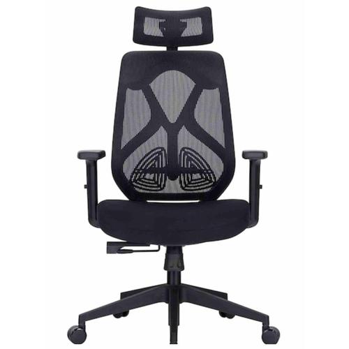 Home Office Chair Model - Plush B  Ergonomic Office Chair