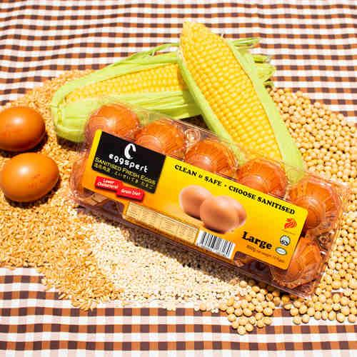 Eggspert Sanitised Eggs Per Carton