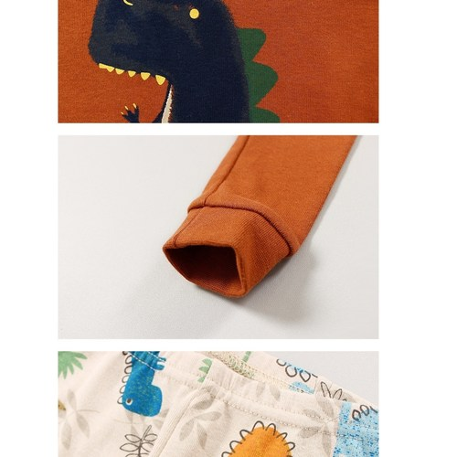 Dinosaur Friend Easywear