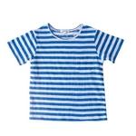 Percy T Big Stripes