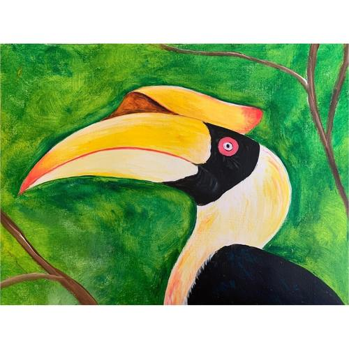 The Majestic Hornbill