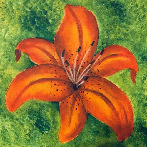 Virtual Artjam - Tiger Lily