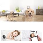 Ezvi HD 1080P Wi-Fi Pan Tilt Internet Wireless Camera (White)-Free Installation