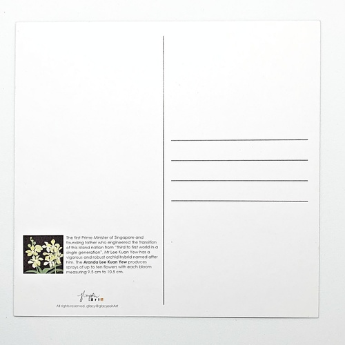 Sketches Of Singapore Series Orchid Postcard - Aranda Lee Kuan Yew by Glacy Soh