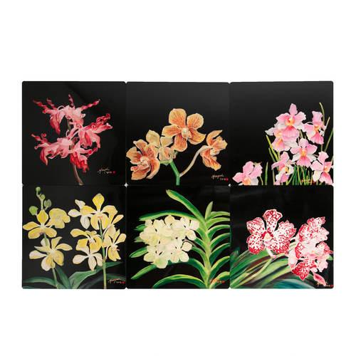 SOS 5 Orchids Coasters Jumbo
