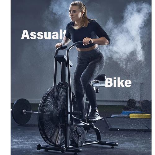 Assault AirBike Classic