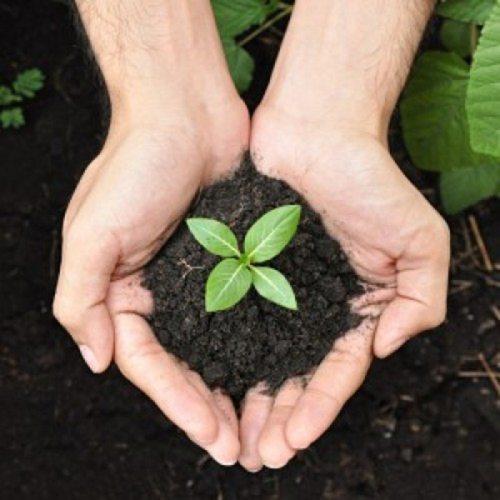 Organic Vermicompost Fertilizer Manure for Plants - 5 KG
