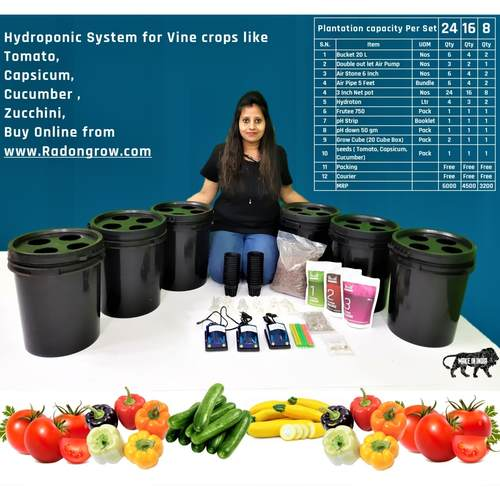 DWC Bucket System for Vine Crops.