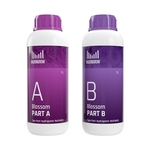 Blossom AB2L Hydroponic Nutrient for Flowers