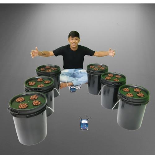 DWC Bucket System for Vine Crops.