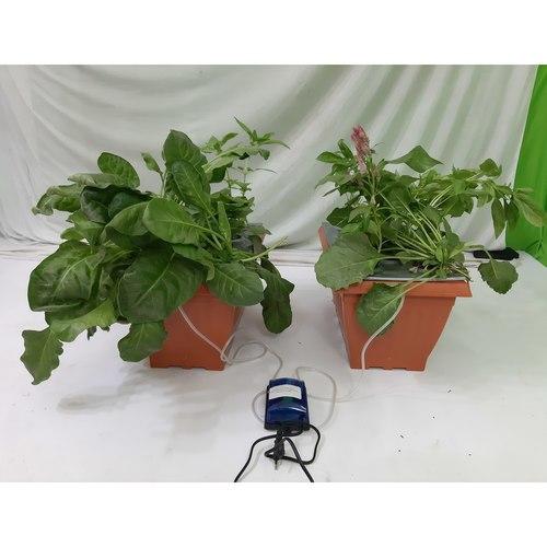 DWC 1010  Hydroponic Grow Kit for 20 Plants