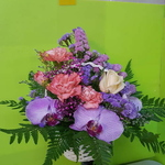 Vflowers Taiwan Orchids Basket
