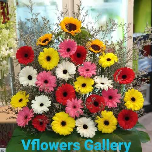 Vflowers Colorful Opening