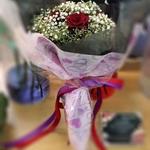 Vflowers 5 Red Roses B