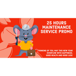 25 Hours Maintenance Service