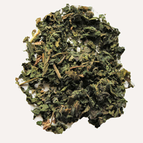 Himalayan Nettle - Lemongrass