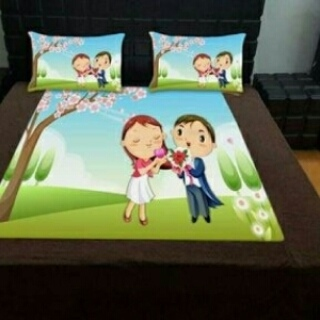 Velvet Bedsheet with pillow cover