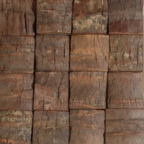 Dakar 1 Rough Coconut Tree Bark  Matter Varnished