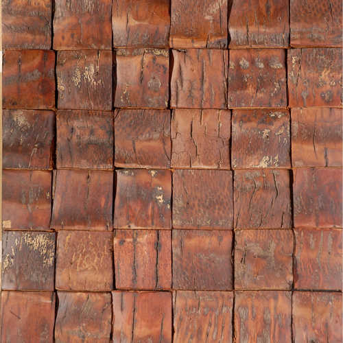 Dakar 3 Smooth Coconut Tree Bark   Matte Varnished