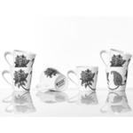 Mango Lotus Set of 6 Mugs