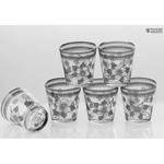 Flower Transparent Glasses- Set of 6