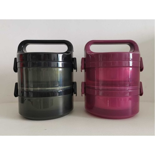 Roy Dom 2-Layers 304 Stainless Steel Thermal Food Container
