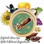 The Paradise Trees Cocoa Powder And Coffee Lip Rejuvenating Scrub 5G