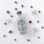 A small transparent clear glass bottle with a black cap and grey powder inside. The words Ometry is printed on top and Detox like a vampire is printed below.
