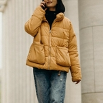 Winter Jacket Waist Length Dry Clean