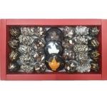 Dryfruit Dates chocolate Assorted
