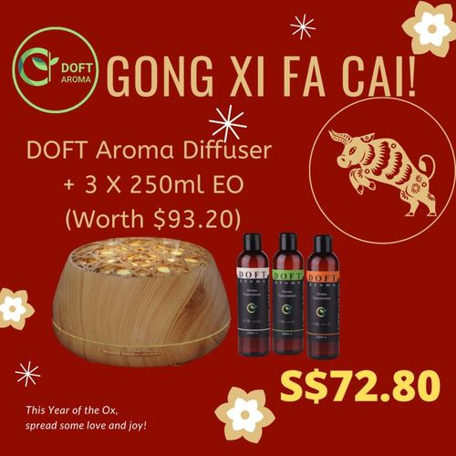 Aroma Essential Oil Diffuser + 3 X 250ml Essential Oil