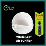 FREE SHIPPING + Leaf Purifier + 250ML EO
