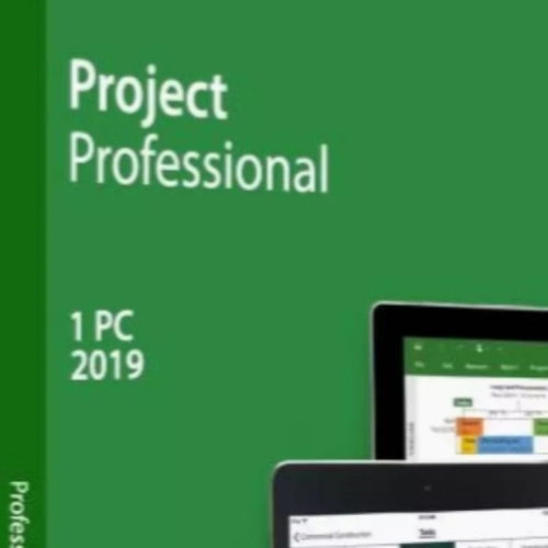 Microsoft Project Professional (Windows 10 only)