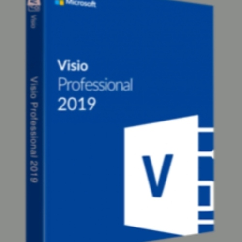 Microsoft Visio 2019. (compatible with windows 10)