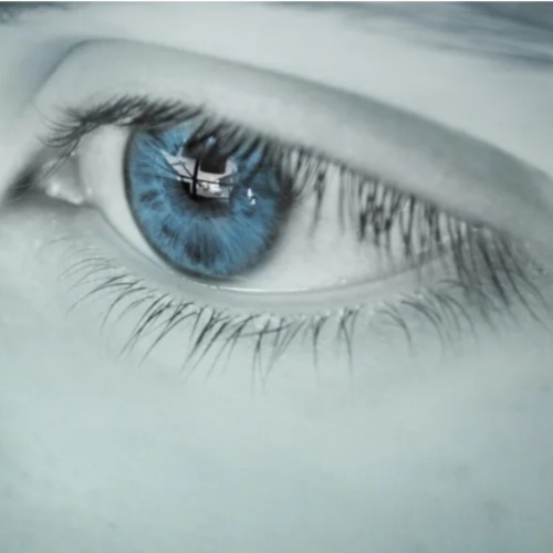 Eyelash and brows serum